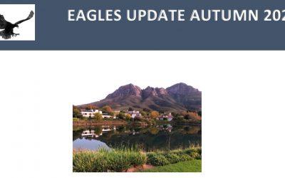 Eagles Update